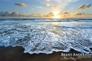 Saltwater Sunrise - Palm Beach, FL