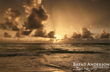 Copper Sunrise - Palm Beach, FL