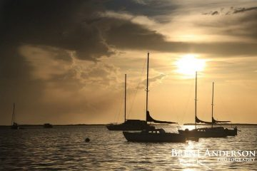 Sails at Rest - Key Largo, FL