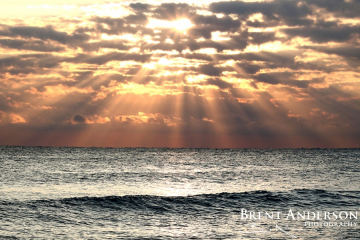 Atlantic Sunburst -  Palm Beach, FL
