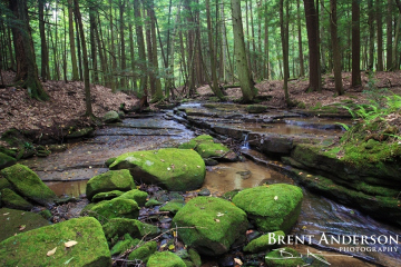 Boulders-of-Green