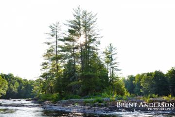 Pine-Island