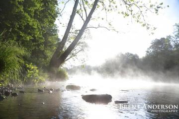 Rising-Fog