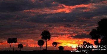Fire in the Sky- Kissimmee River, Okeechobee, FL