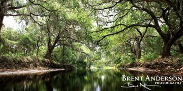 Blackwater Passage - Alligator Creek, Osceola, FL