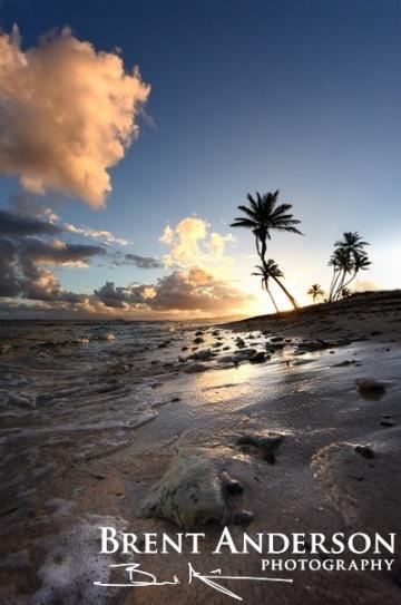 Island Palms - St. Croix, USVI