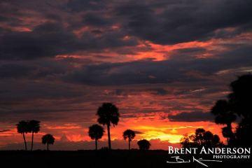 Fire in the Sky - Kissimmee River, Okeechobee, FL