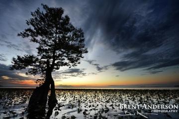 Lake Istokpoga Sunset 1 - Highlands, FL