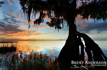 Lake Istokpoga Sunset 2 - Highlands, FL