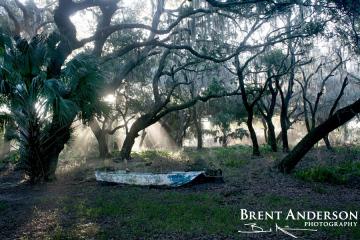 The Forgotten Boat - Kissimmee River, Okeechobee, FL