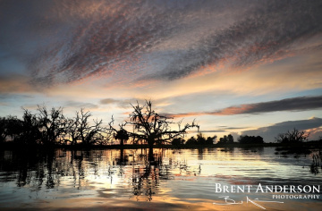 Pastel Reflections - Kissimmee River, Okeechobee, FL