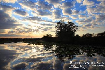 Mirrored Sunset - Kissimmee River, Okeechobee, FL