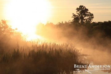 63.-Misty-Sunrise