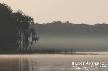 64.-Misty-Morning