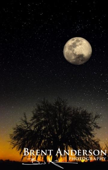 Kissimmee Moonrise - Okeechobee, FL