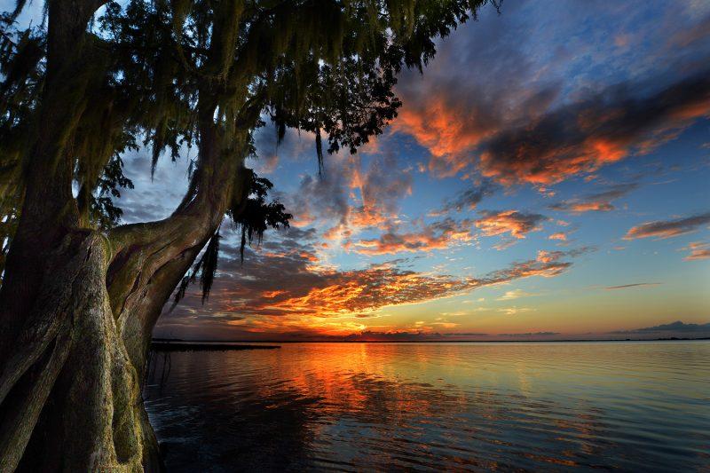 Northern Everglades Sunset