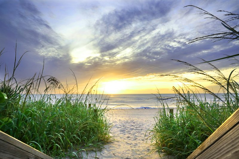 Sea Oat Sunrise - Palm Beach, FL
